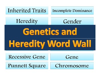 Genetics and Heredity and Word Wall