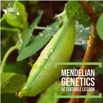 Genetics and Mendel:  A 5E Editable Lesson