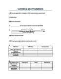 Genetics and Mutations Worksheet