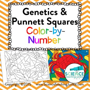 Genetics and Punnett Squares Color-by-Number