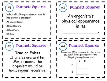 Genetics and Punnett Squares Task Cards