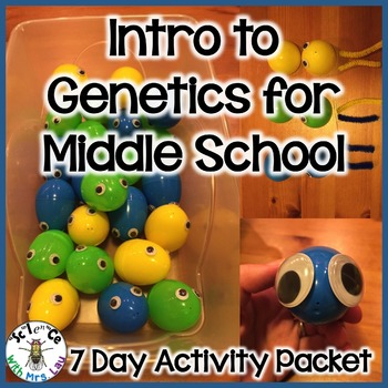 Genetics for Middle School with Easter Eggs and Pipe Cleaner Chromosomes