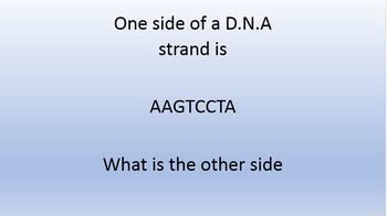 Genetics test prep flash card powerpoint 141 slides