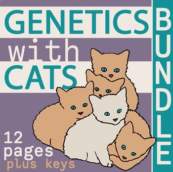 Genetics with Cats Bundle