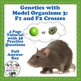 Genetics with Model Organisms 3: P1, F1, and F2 Problems
