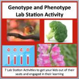 Genotype and Phenotype - 7 Lab Station Activities
