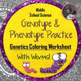 Genotype and Phenotype Genetics Coloring Worksheet