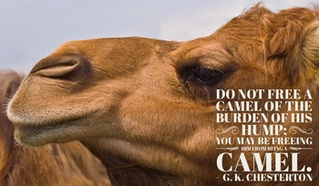 Poster: Gentle Reminders - Chesterton Camel