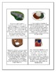Dominican Republic Geography Maps, Flag, Data, and Assessment