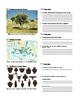 Geography of Ancient Greece Powerpoint Worksheet
