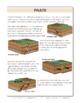 Geologic Faults