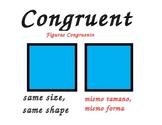 Common Core Geometric Posters (Bilingual)