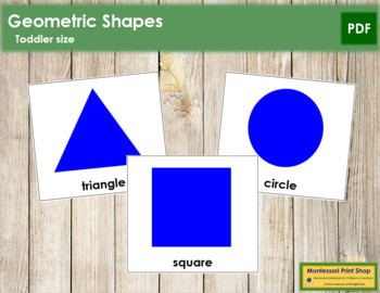 Geometric Shapes - Toddler