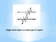 Geometry Fly Swat Game