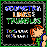 Geometry: Identifying Types of Lines and Triangles