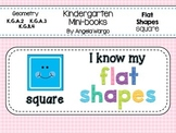 Geometry Mini Readers – Flat Shapes – Square