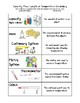 Measurement Vocab Sort and Word Wall Cards