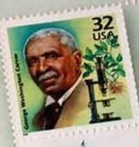 George Washington Carver, Plants and Peanuts Power Point
