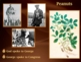 George Washington Carver: The Plant Doctor