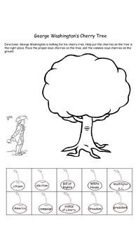 George Washington's Cherry Tree Noun Sort