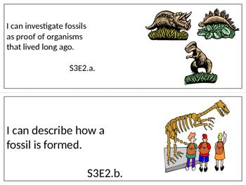 Georgia 3rd grade Science Standards (editable)