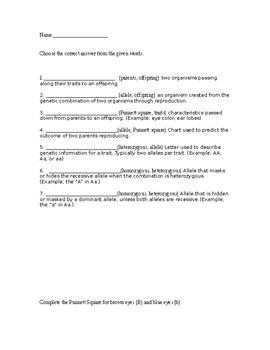 Georgia Alternative Assessment (GAA) Science Activity