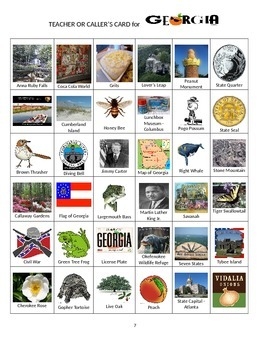Georgia Bingo:  State Symbols and Popular Sites