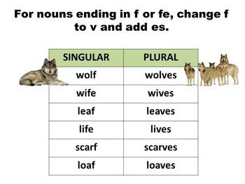 Georgia Grade 5 Journeys Unit 1, Lessons 4 and 5 Grammar (Nouns)
