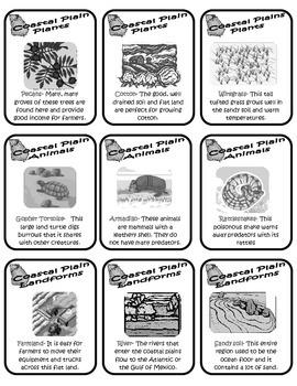 Georgia Habitats Card Game