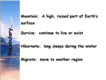 Georgia Habitats - Mountain