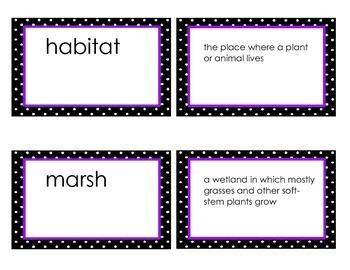 Georgia Habitats Vocabulary Flash Cards