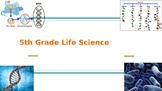 Georgia Milestone GMAS 5th Grade Science Review Life Science
