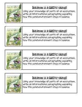 Georgia Regions / Habitats Writing Journal Prompts