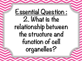 Georgia Standards of Excellence 7th Life Science Essential Questions ALL UNITS