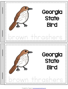 Georgia State Symbols Notebook