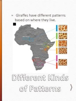 Gerald the Giraffe Class pet