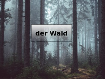 German Holiday Vocabulary Slideshow