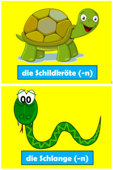 German Pet Vocabulary