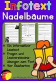 German Reading Comprehension- Deutscher Sachtext- Nadelbäume