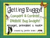 Get Buggy! ~Compare & Contrast Realistic Bug Photos~ Photos, Printables & Tools!