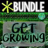 Get Growing Bundle! {Seeds, veggies, herbs, flowers, trees + more}