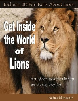 Get Inside the World of Lions