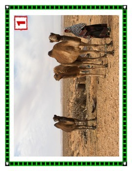 Get the Picture: Africa, Life in the Sahara and Sahel