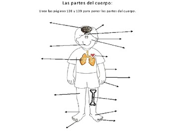 Getting Hurt/ Body Parts Vocab, Expresate Ch 4, Spanish 2
