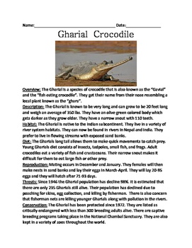 Gharial Crocodile - endangered review lesson article facts questions