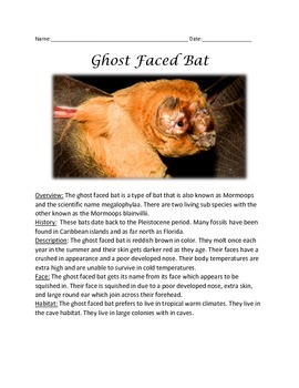 Ghost Faced Bat - Informational Article Facts Questions Vocab Word Search