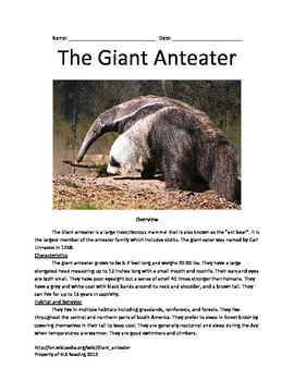 Giant Anteater - Informational article questions vocabulary facts