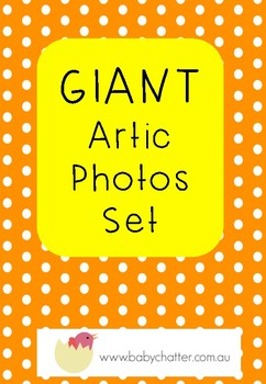 Giant Artic Photos Set