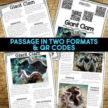 Giant Clam: Informational Article, QR Code Research & Fact Sort