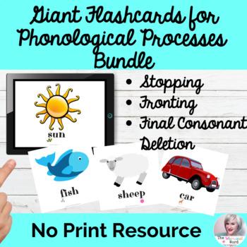 Giant Flashcards for Phonological Processes: BUNDLE SET 1 NO PRINT
